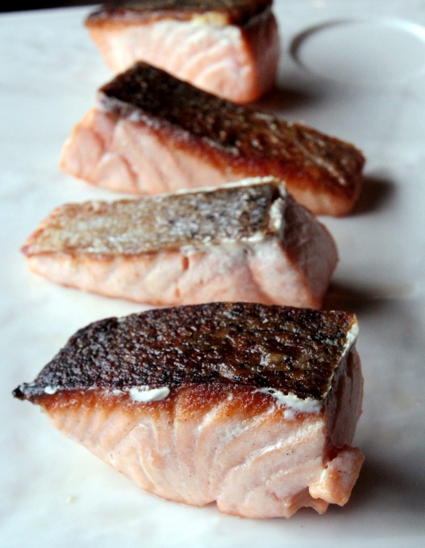 Fresh catch of the day - salmon.