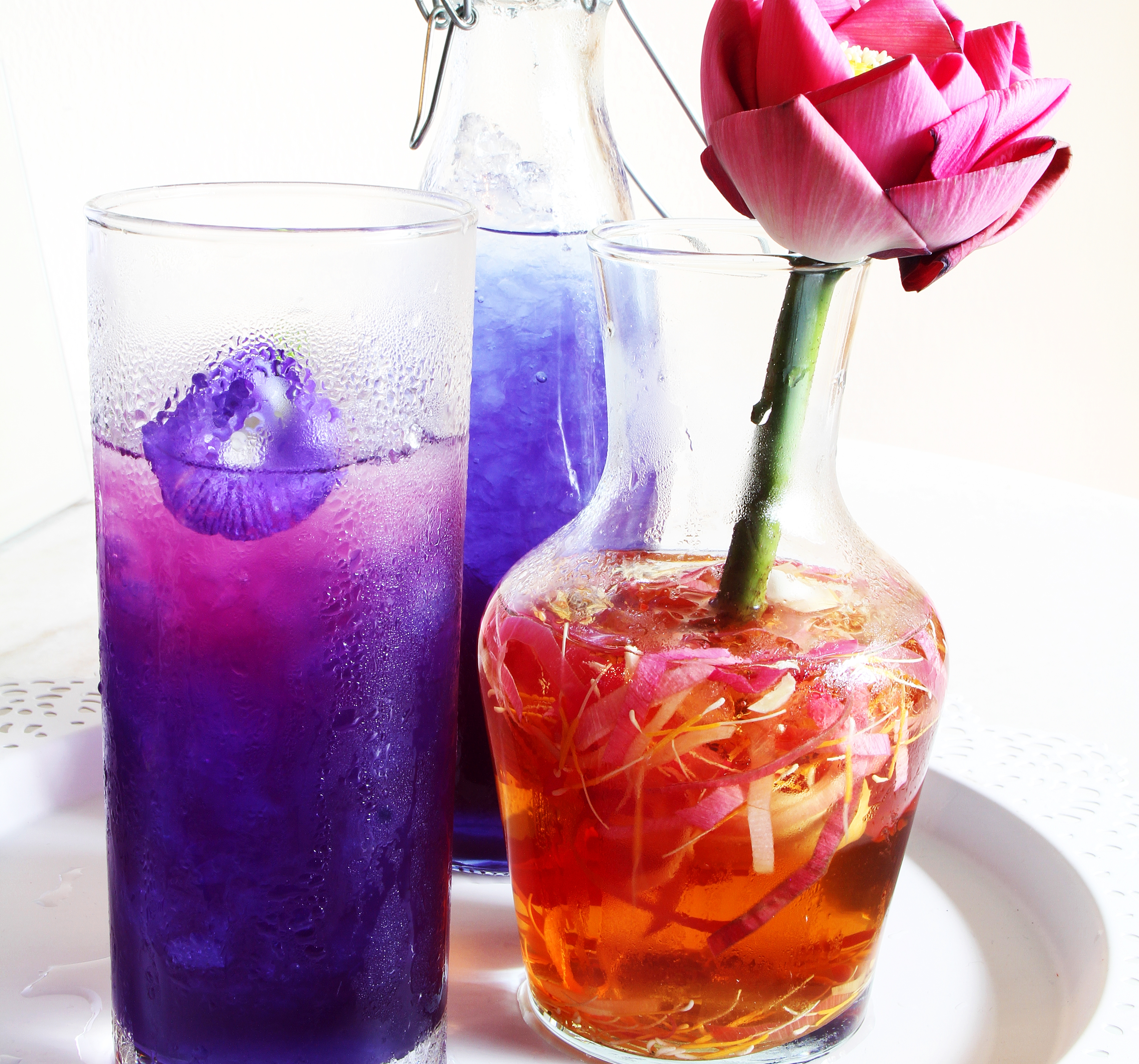 Butterfly Pea Flower and Lemongrass cooler