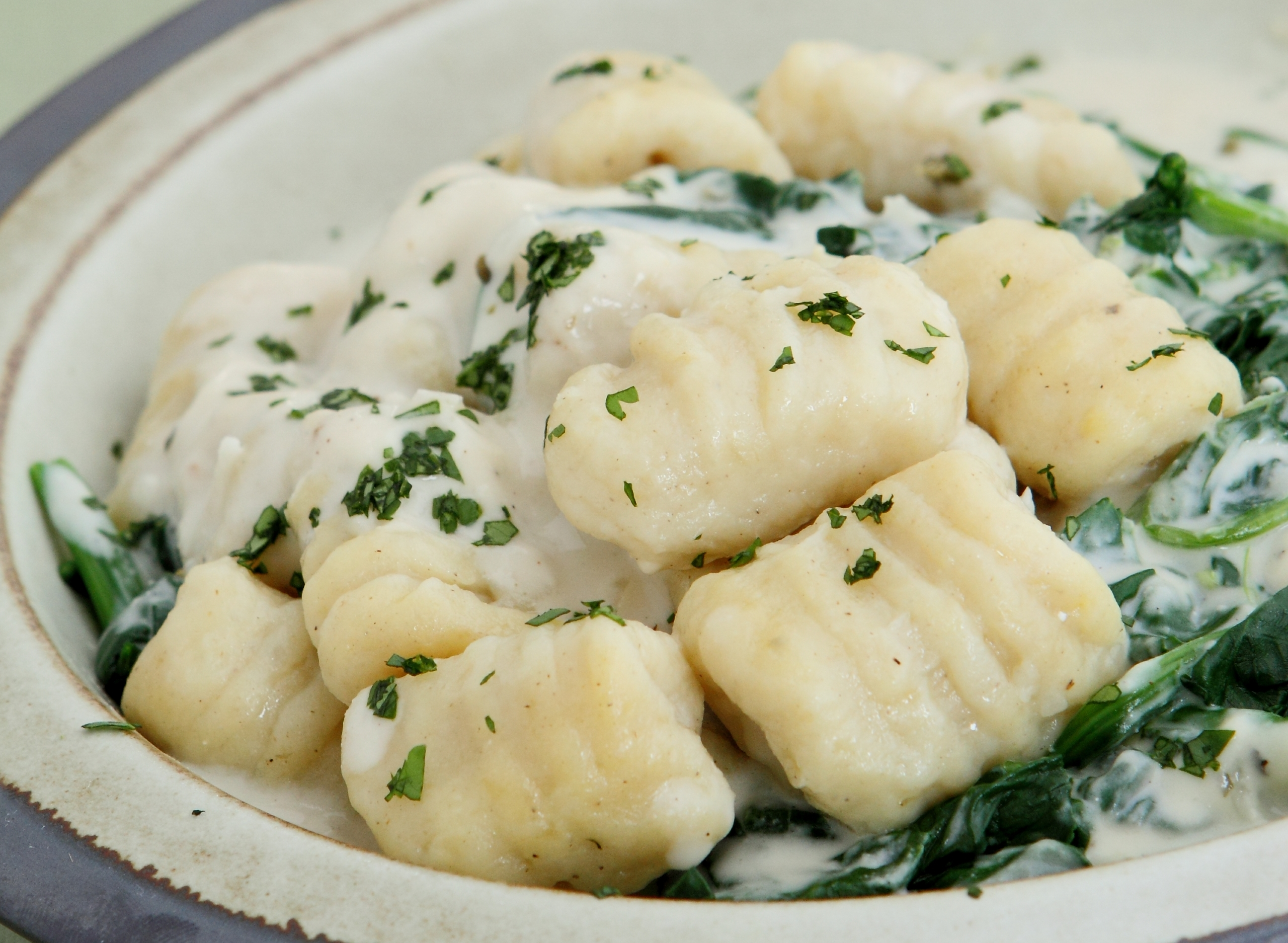 Gnocchi in Cheese Sauce