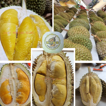 Penang AH TEIK ZAI Durian (New World Park)