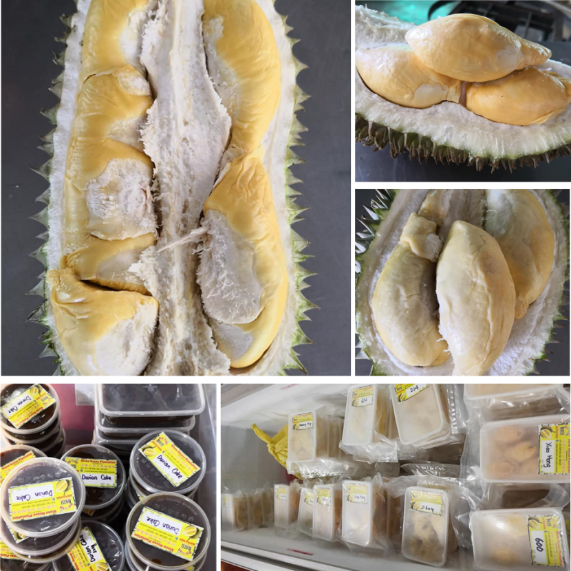 Stone-House-Plantation-Durian-Rumah-Batu