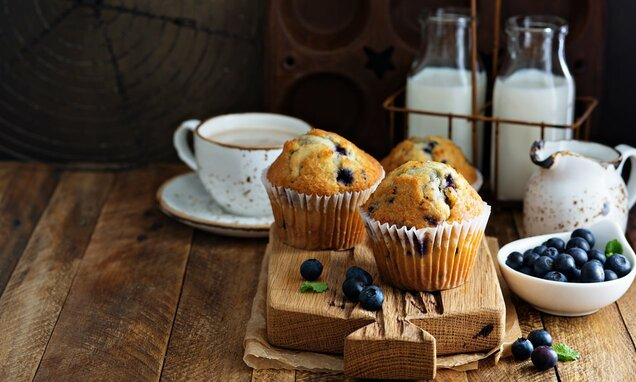 Blueberry-Muffins-Dr.-Oetker-Nona