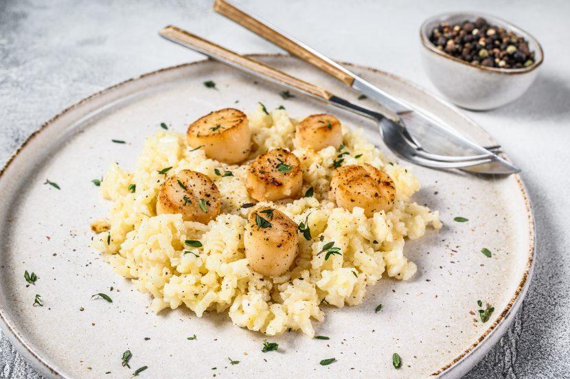 Italian Risotto with pan seared sea scallops. White background.